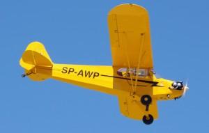 Langsame, einfache E-Klasse-Flieger bis 600 kg MTOW wie z.B. die Piper J3 C, die ein geringes Risiko-Potenzial aufweisen, könnten dagegen in die Annex 2 - Liste aufgenommen werden. Die deutschen Behörden hätten dann die Möglichkeit, für diese Geräte ein stark vereinfachtes Regelwerk in Zulassung und Unterhalt anzuwenden, wie das bei den UL der Fall ist.